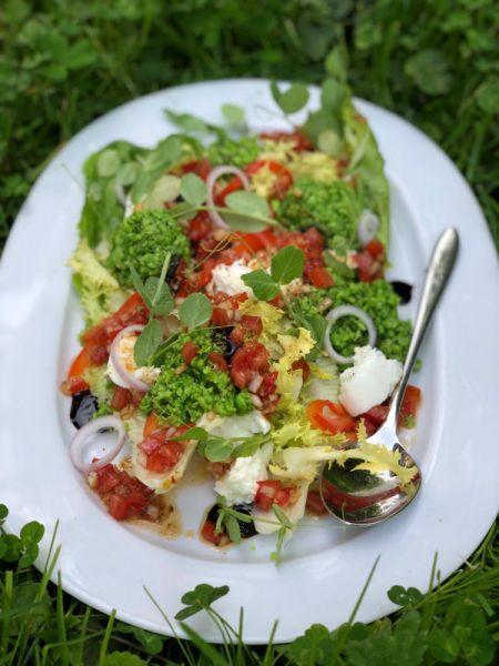 ristorante Pastis Kitchen - TXT_CUISINE_SUN